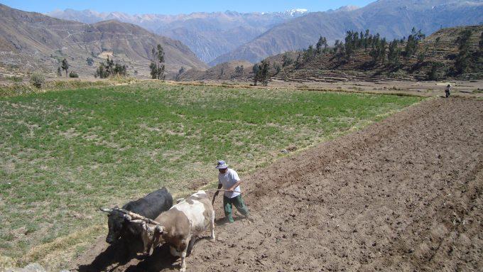 Viaje a Perú a medida. Perú completo