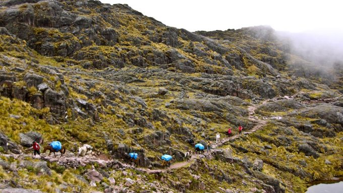 Viaje temático de trekking a Perú. Andes del sur y Lares trek